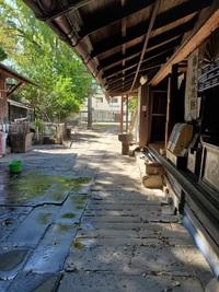 長崎 名物 大徳寺焼き