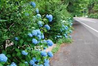 森山町唐比から慶師野へ抜ける道沿い