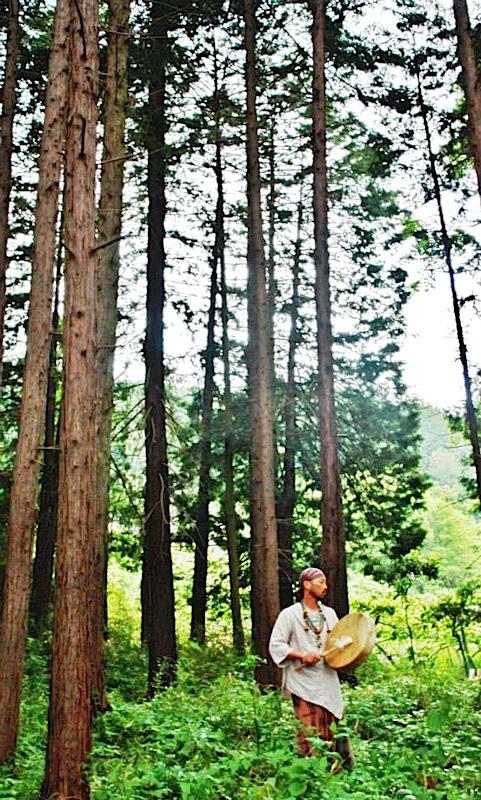 縄文スピリットの森