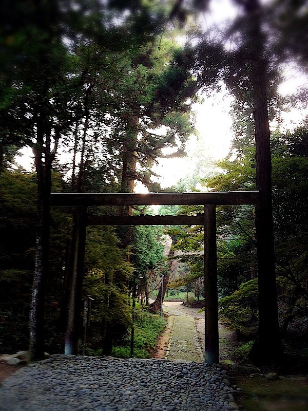 旅の途上(福岡、糸島〜天神 - 前編)