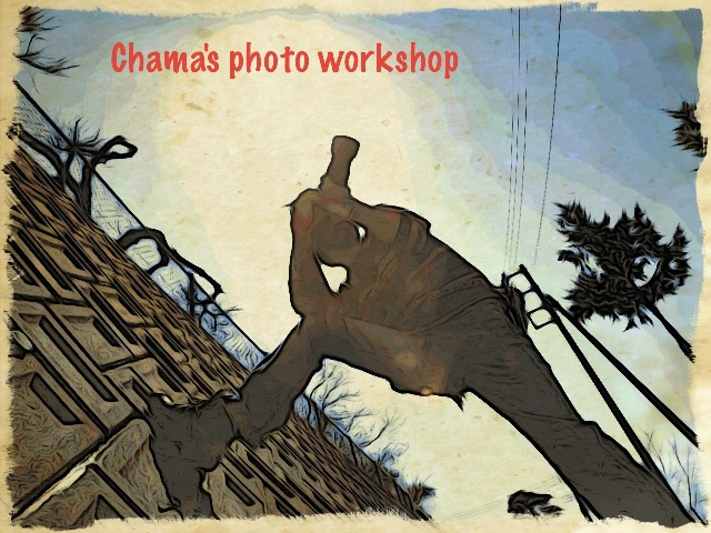 Chamas photo workshop