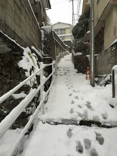 長崎大雪2016