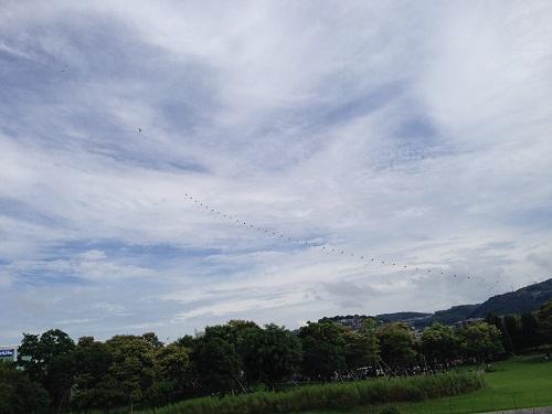 長崎水辺の森9月のイベントは