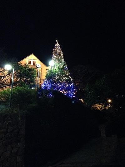 活水クリスマスツリー