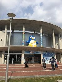 長崎ペンギン水族館はペンギンだけじゃない。