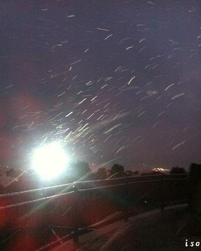 雪の展望台