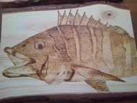 魚の絵にはまっています