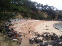 今年最初の海岸清掃で気持ちもスッキリ!
