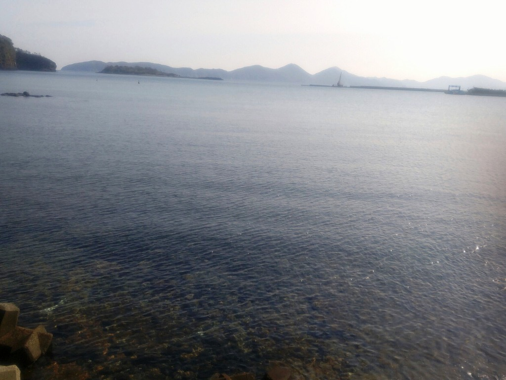 島の太刀魚と鯛でおいしい家飲み!