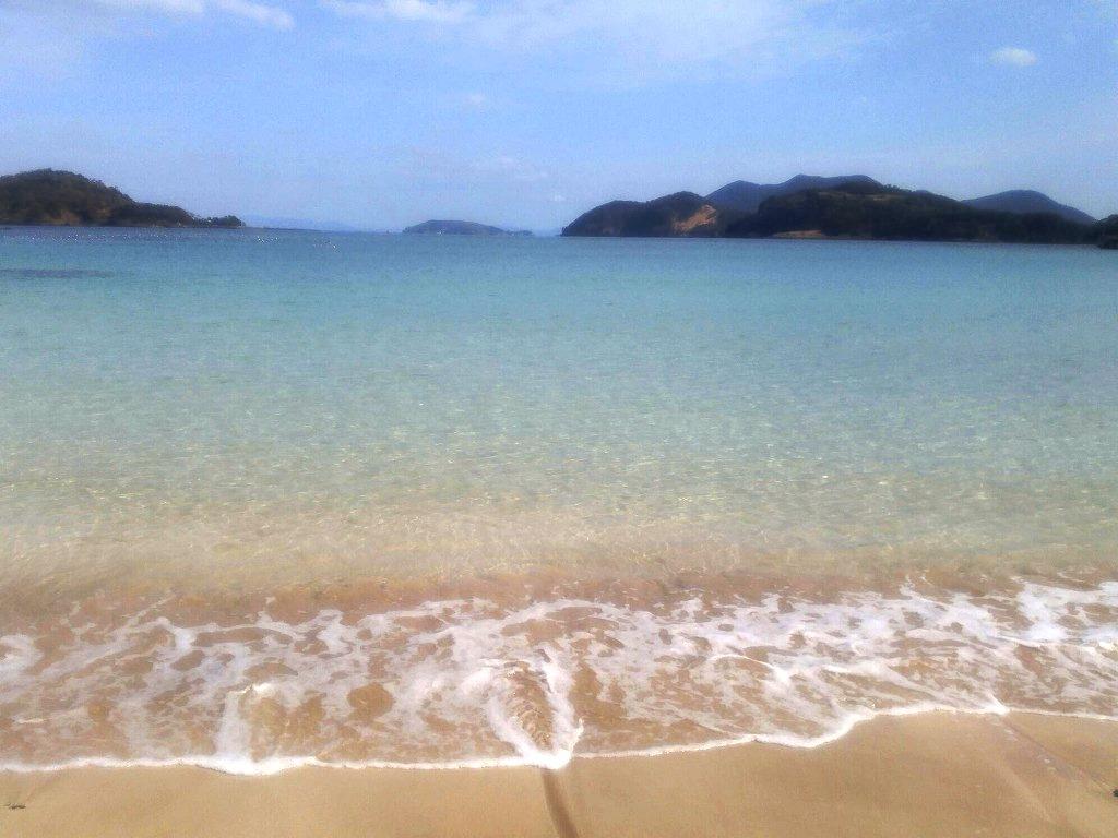 島を綺麗に!今月も海岸清掃に参加!!