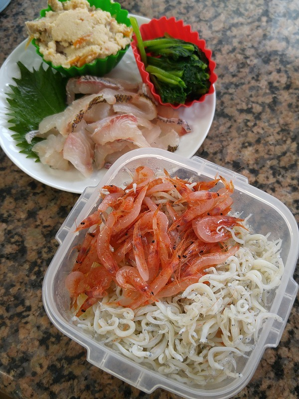 今日のお弁当は静岡の味☆