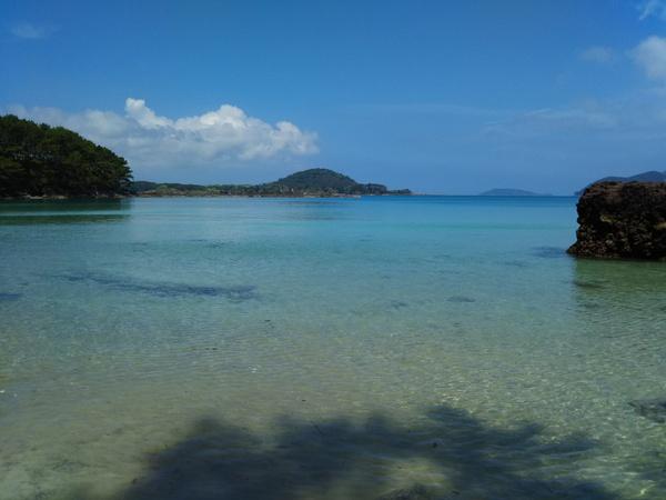 島で今年初泳ぎ!