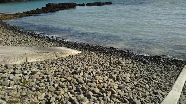 久しぶりの海岸清掃!