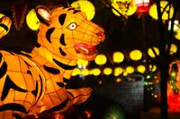 ランタンフェスティバル 2013 プレイバック