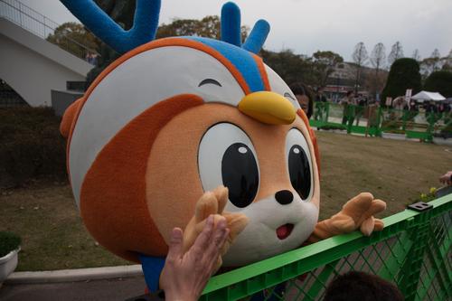 ホーム北九州戦 2014 J2