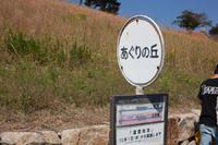 あぐりの丘 コスモス 2015
