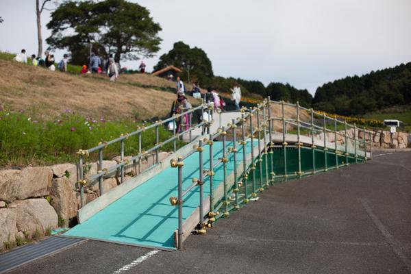 あぐりの丘 コスモス 2016