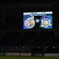 ●V・ファーレン長崎 1-2 カマタマーレ讃岐 2016 J2