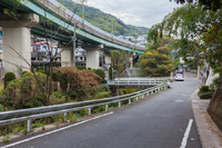 長崎市の紅葉スポット 妙相寺