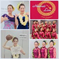 ハワイロア 2019