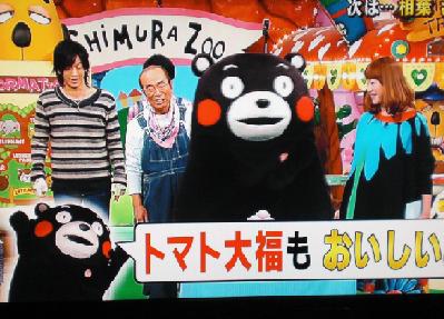 天才!志村どうぶつ園に登場した熊本県のゆるキャラ、くまモン