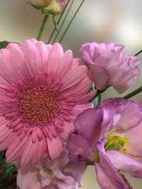 今週のお花が届きました