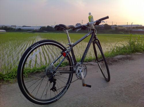 gaiant escape r3 というクロスバイク