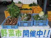 野菜市 開催中!!